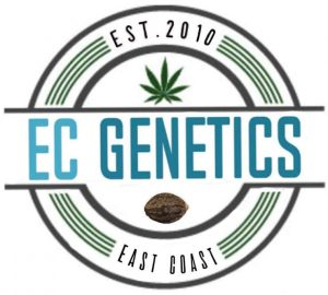 EC Genetics | Producers of Cannabis Seeds in Eastern Canada